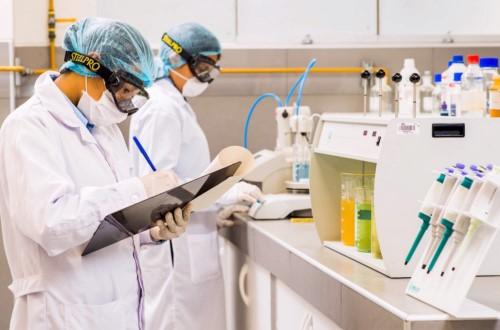 Química Industrial (año 2020) - Plan Licenciatura Química